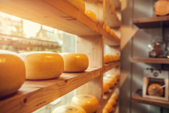 Ассортимент швейцарских сыров